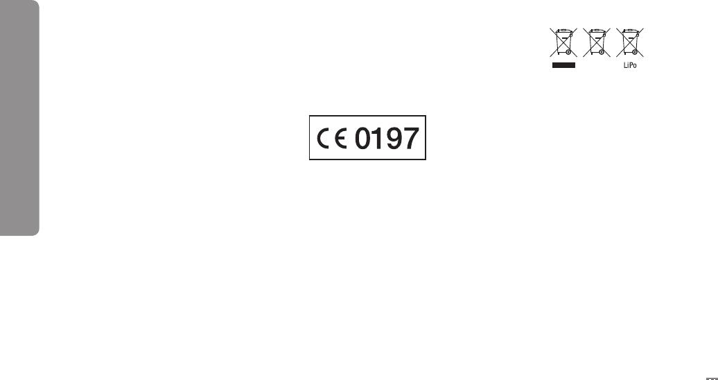 Handleiding Carrera 500001 (pagina 6 van 40) (Alle talen)